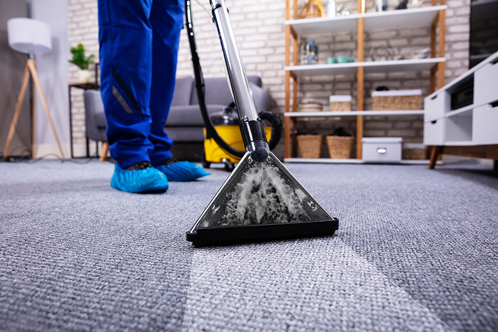 Try These Pro Tips to Clean Up Carpet